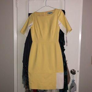 Never Worn Antonio Melani Dress in Citron
